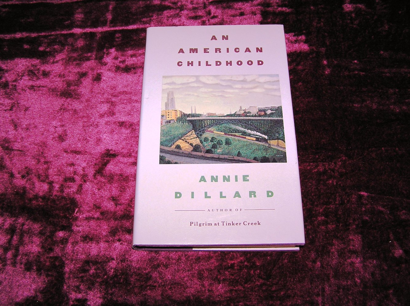 annie dillard an american childhood Annie dillard is an american author , known to create fictional and non-fictional  stories so far, she has published works of poetry like,.