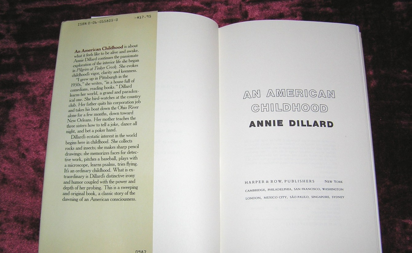 an american childhood annie dillard essay Annie dillard was a contributing editor to harper's magazine from 1973 to 1985 teaching a stone to talk (1982) an american childhood (1987).